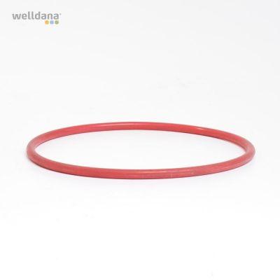 O-ring for chlorine feeder for model 30-001394