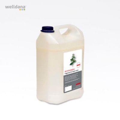 Fragrance for steamroom Eucalyptus