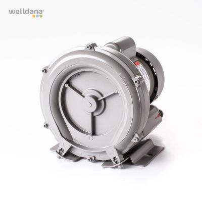 Welldana® Ring chamber blower